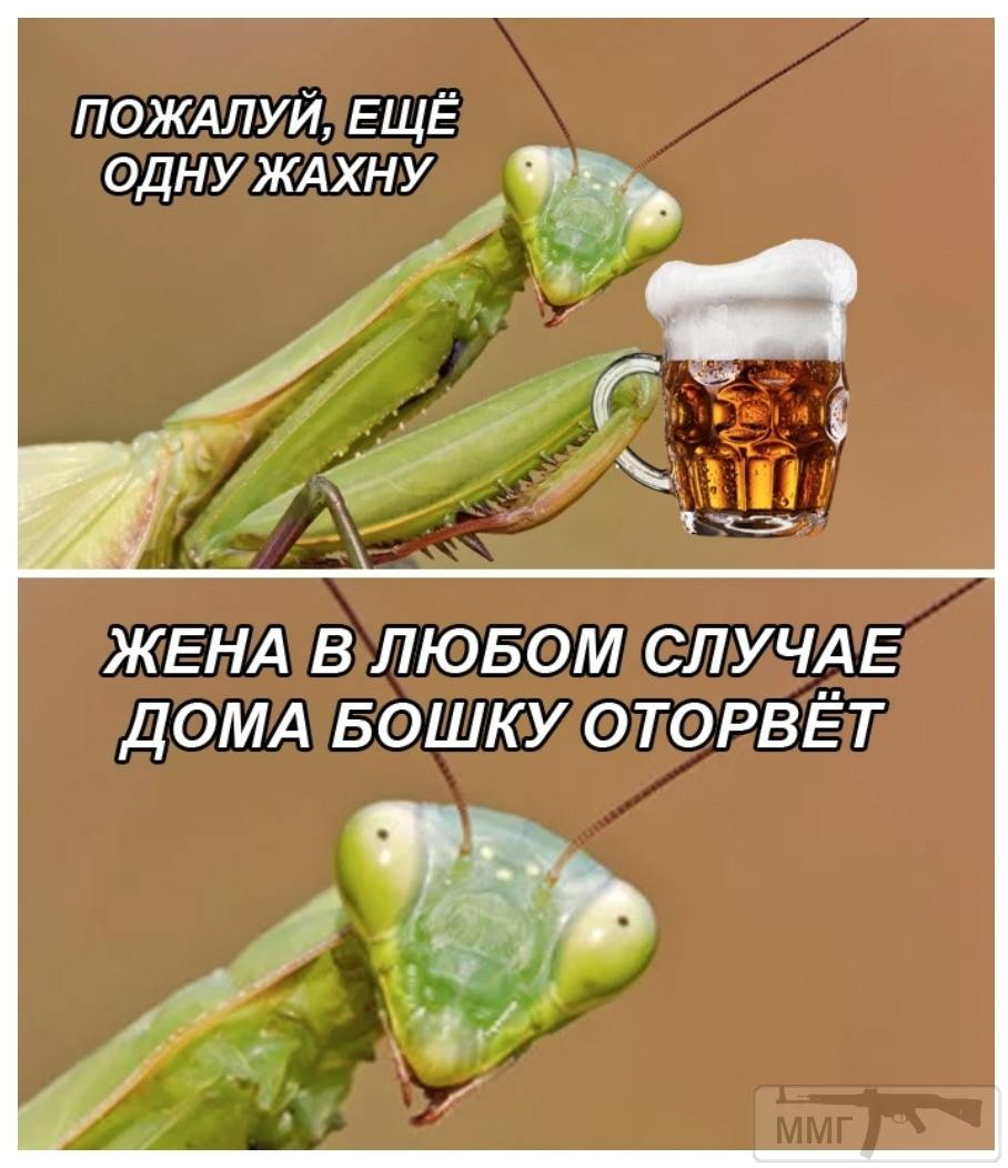 100066 - Пить или не пить? - пятничная алкогольная тема )))