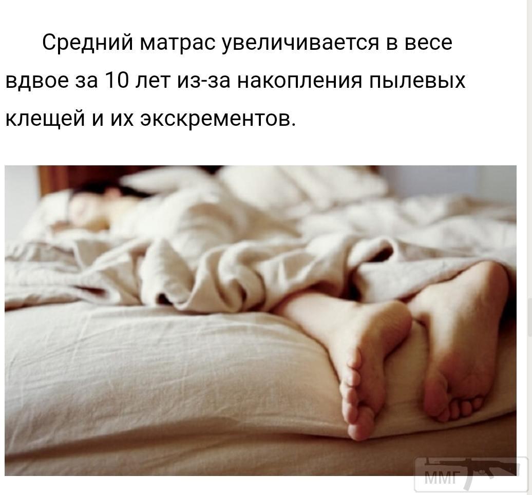 100544 - А знаете ли вы?...