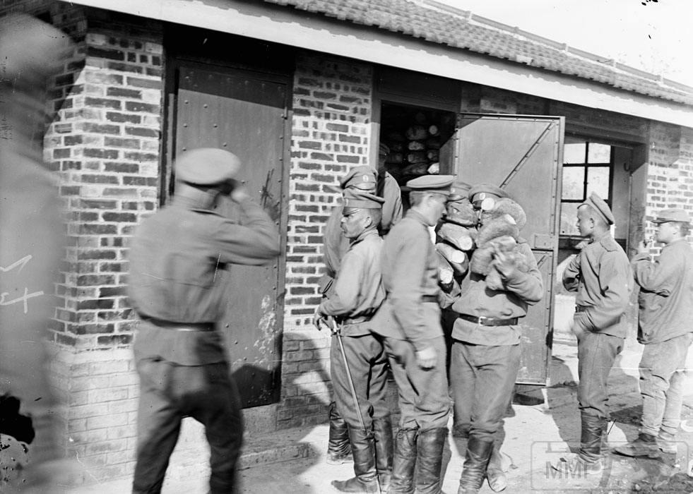 101574 - Военное фото. Западный фронт. 1914-1918г.г.