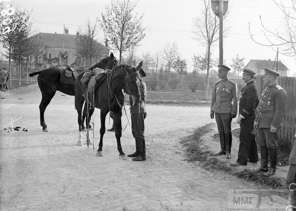 101575 - Военное фото. Западный фронт. 1914-1918г.г.