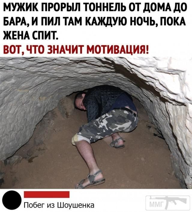 101895 - Пить или не пить? - пятничная алкогольная тема )))