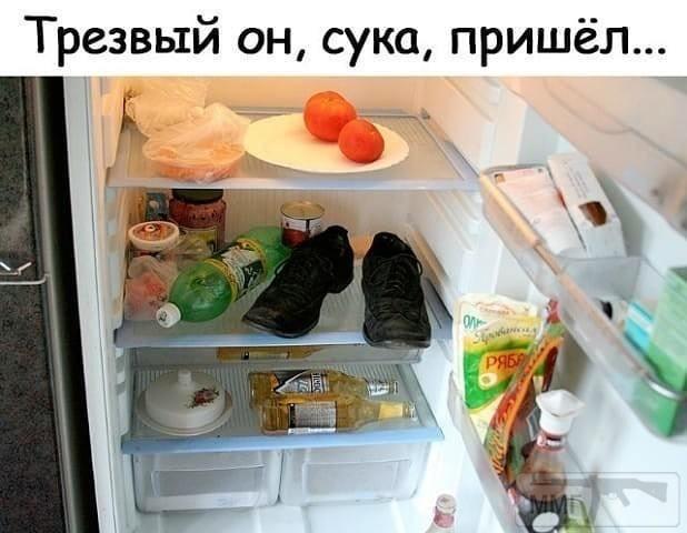 102614 - Пить или не пить? - пятничная алкогольная тема )))