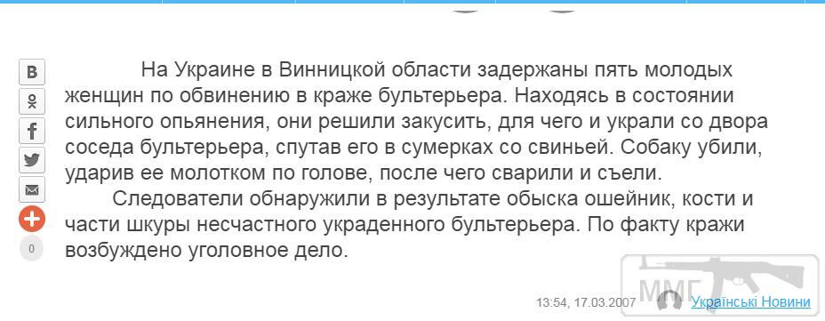 103126 - А в России чудеса!