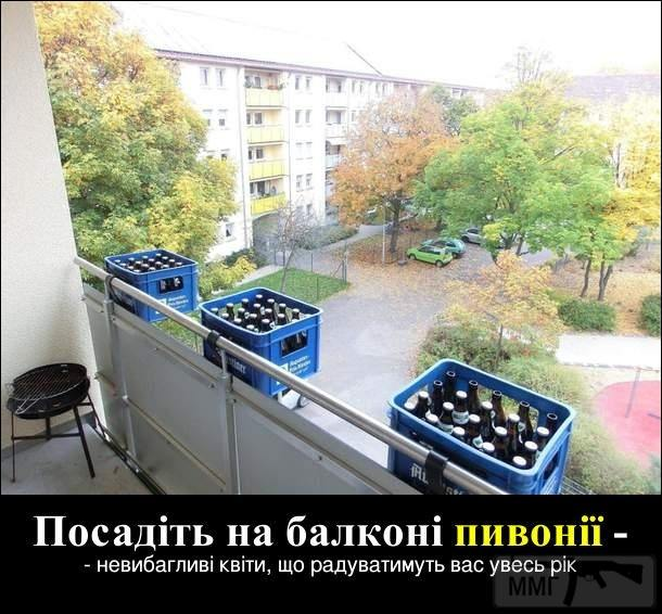 103526 - Пить или не пить? - пятничная алкогольная тема )))