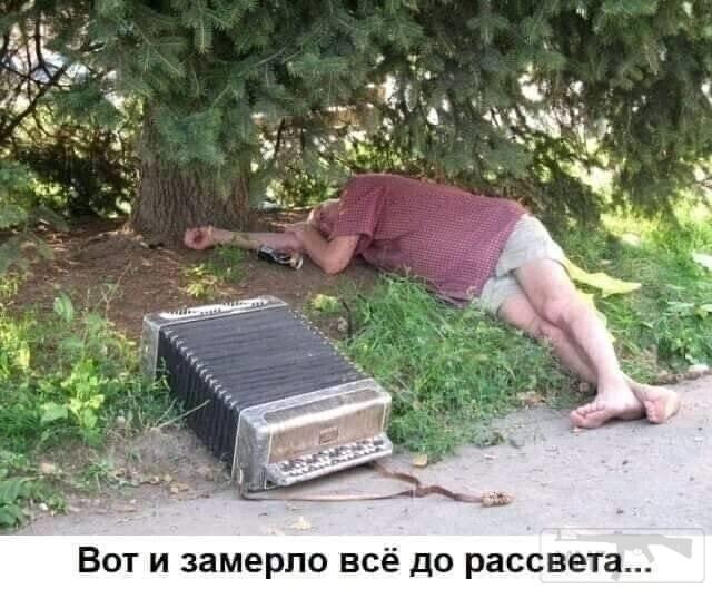 103691 - Пить или не пить? - пятничная алкогольная тема )))