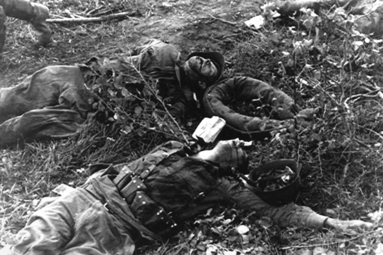 103915 - Военное фото 1941-1945 г.г. Восточный фронт.
