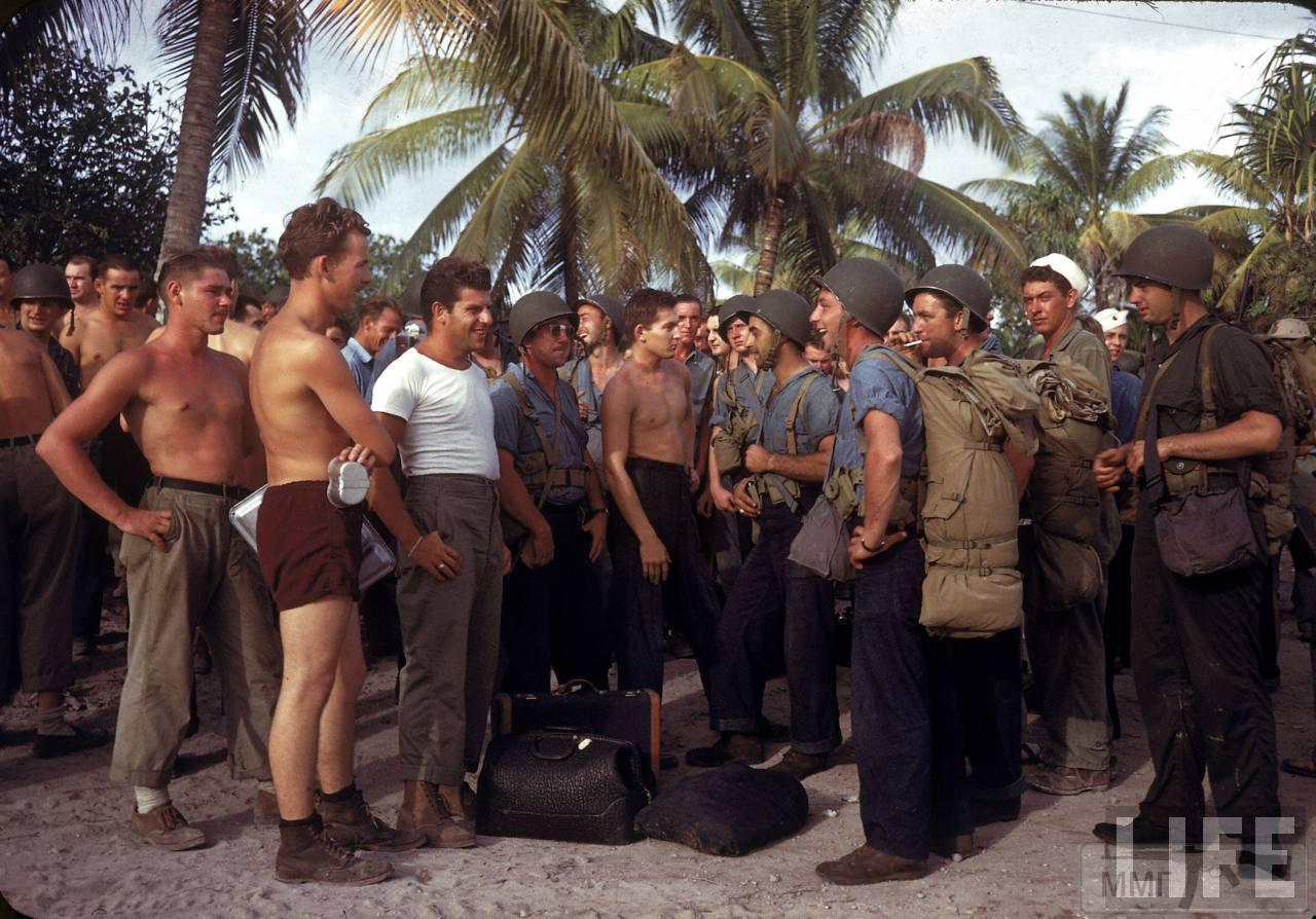 104371 - Война на Тихом океане в цвете