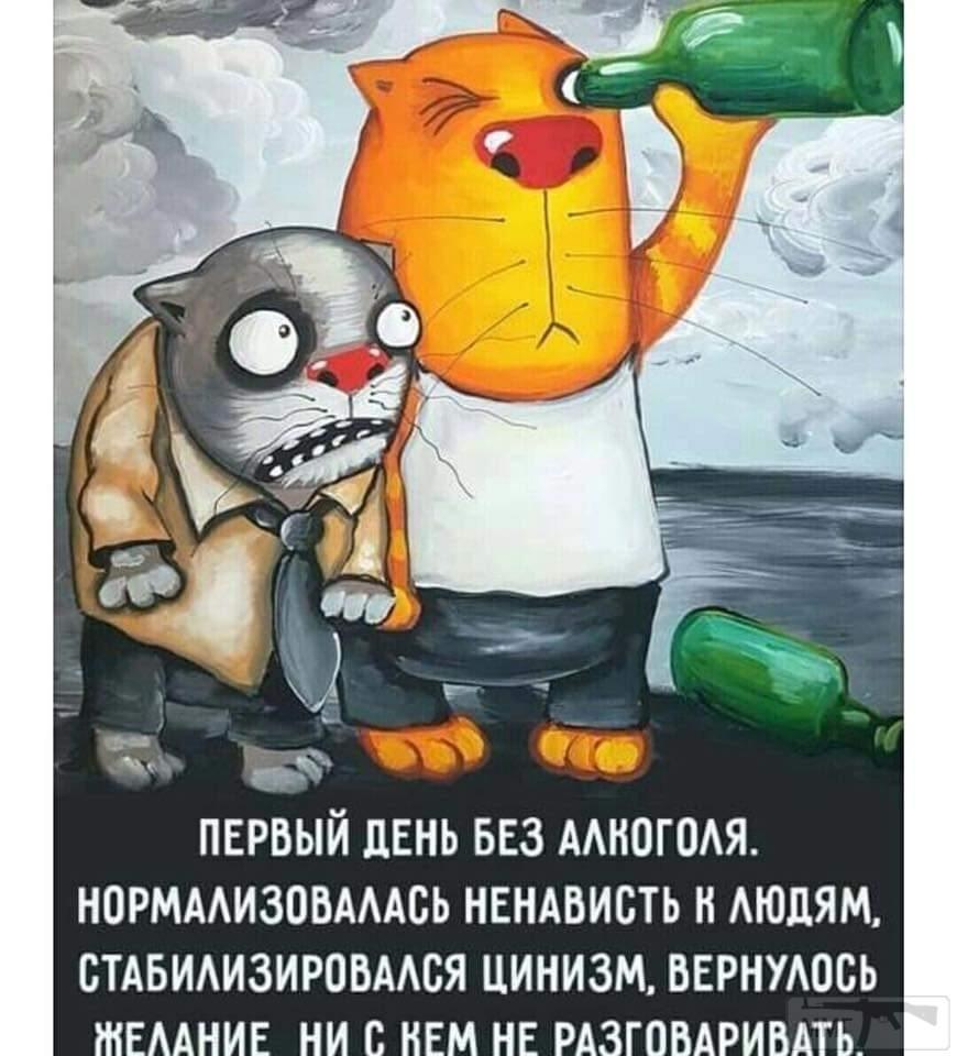 104934 - Пить или не пить? - пятничная алкогольная тема )))