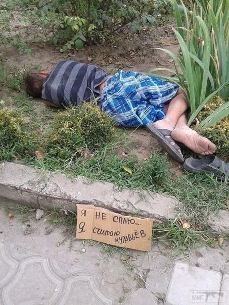 104981 - Пить или не пить? - пятничная алкогольная тема )))