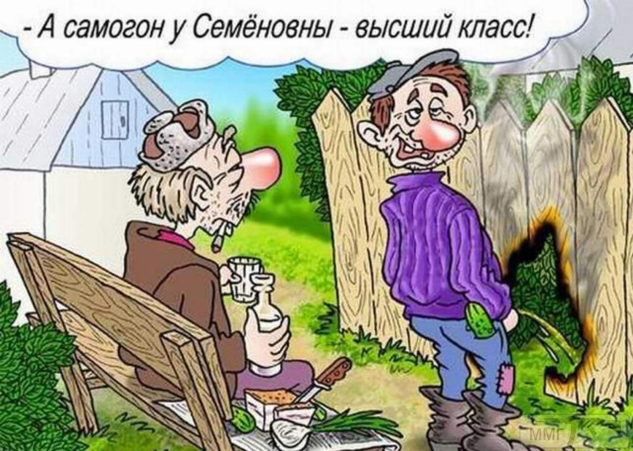 105067 - Пить или не пить? - пятничная алкогольная тема )))