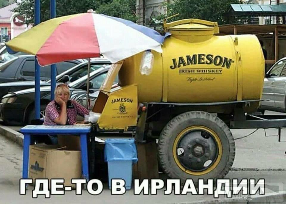 105703 - Пить или не пить? - пятничная алкогольная тема )))