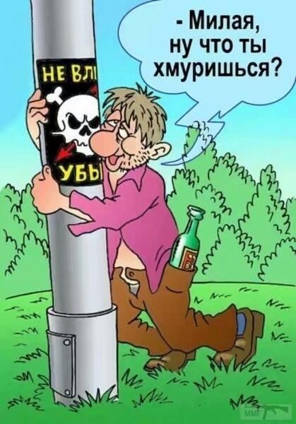 106679 - Пить или не пить? - пятничная алкогольная тема )))
