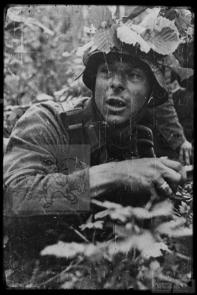 106784 - Военное фото 1941-1945 г.г. Восточный фронт.