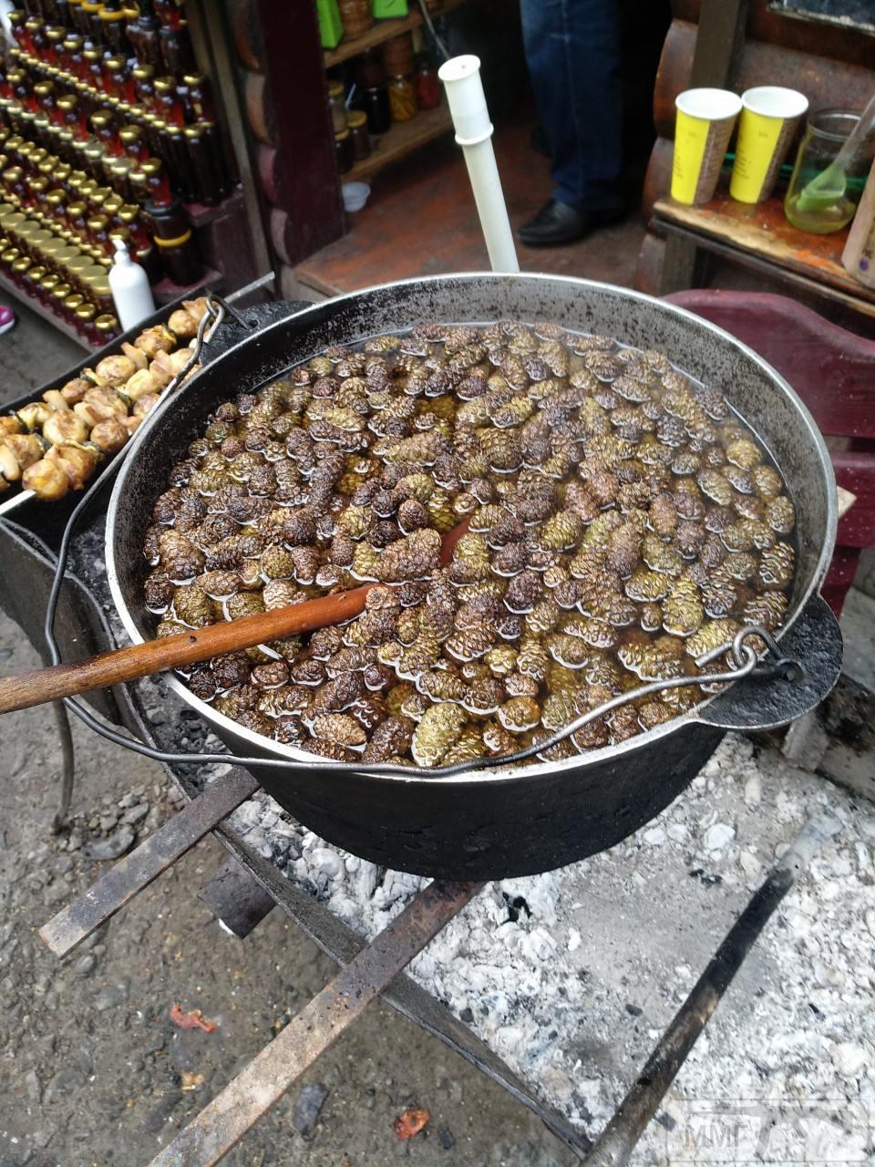 107221 - Закуски на огне (мангал, барбекю и т.д.) и кулинария вообще. Советы и рецепты.