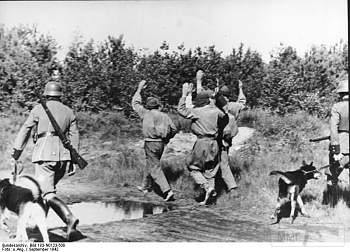 107569 - Животные на войне