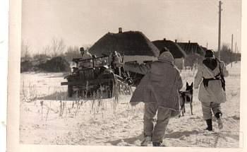107616 - Животные на войне