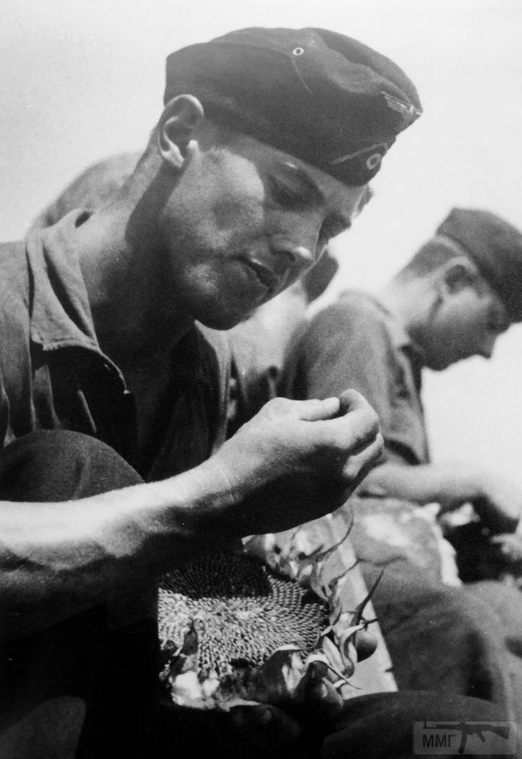 108473 - Военное фото 1941-1945 г.г. Восточный фронт.