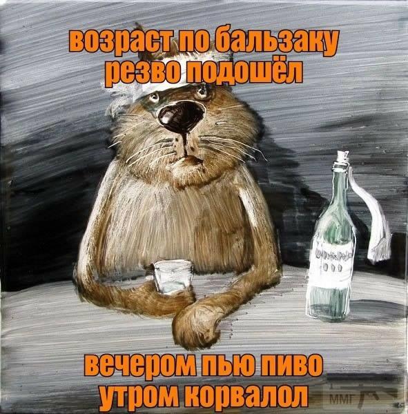 108631 - Пить или не пить? - пятничная алкогольная тема )))