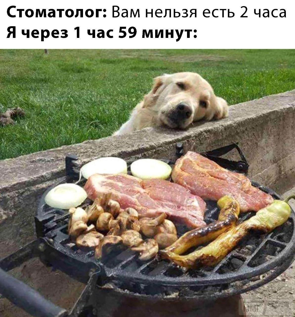 108714 - Закуски на огне (мангал, барбекю и т.д.) и кулинария вообще. Советы и рецепты.