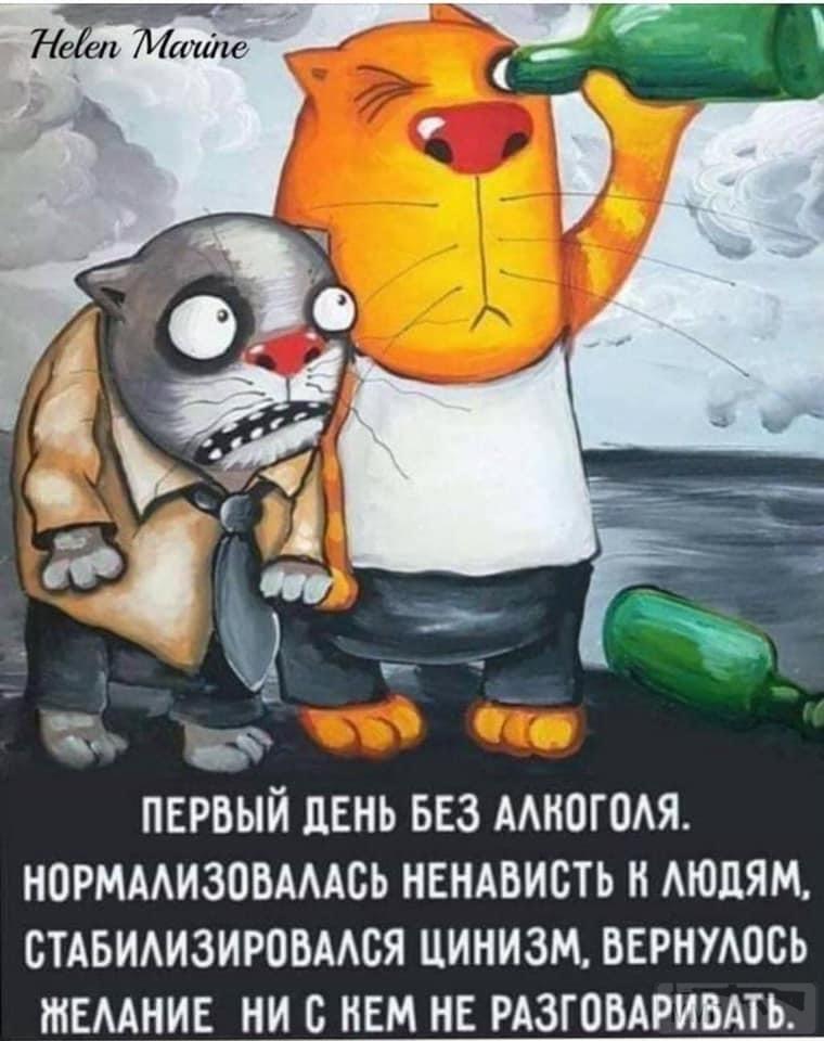 109430 - Пить или не пить? - пятничная алкогольная тема )))