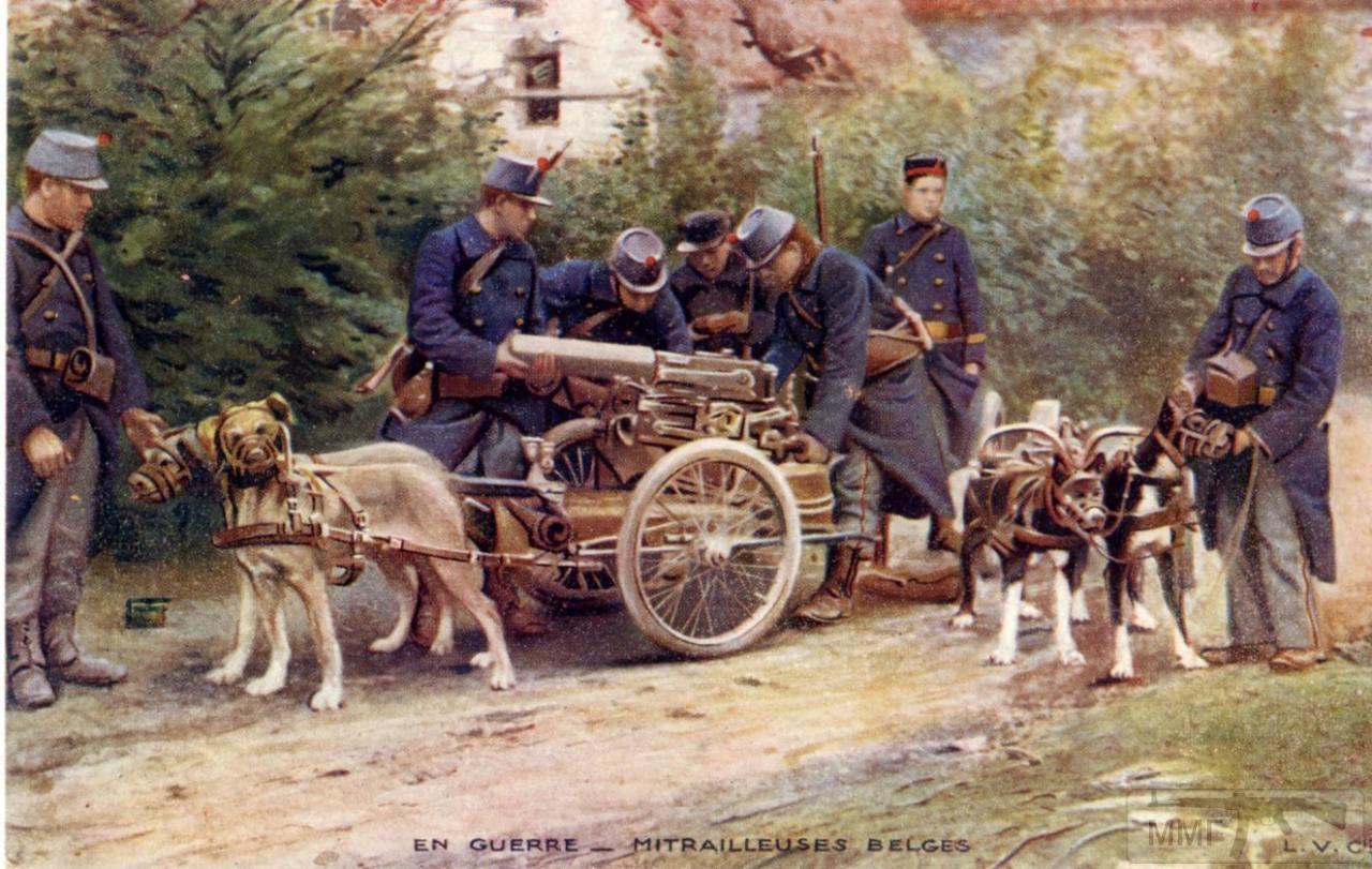 109465 - Животные на войне