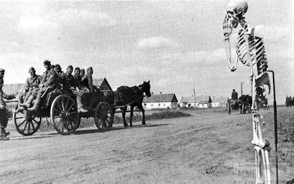 109857 - Военное фото 1941-1945 г.г. Восточный фронт.
