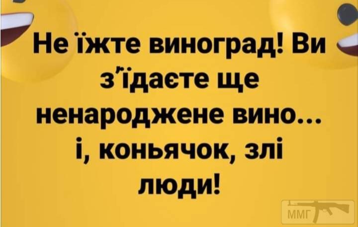 110050 - Пить или не пить? - пятничная алкогольная тема )))