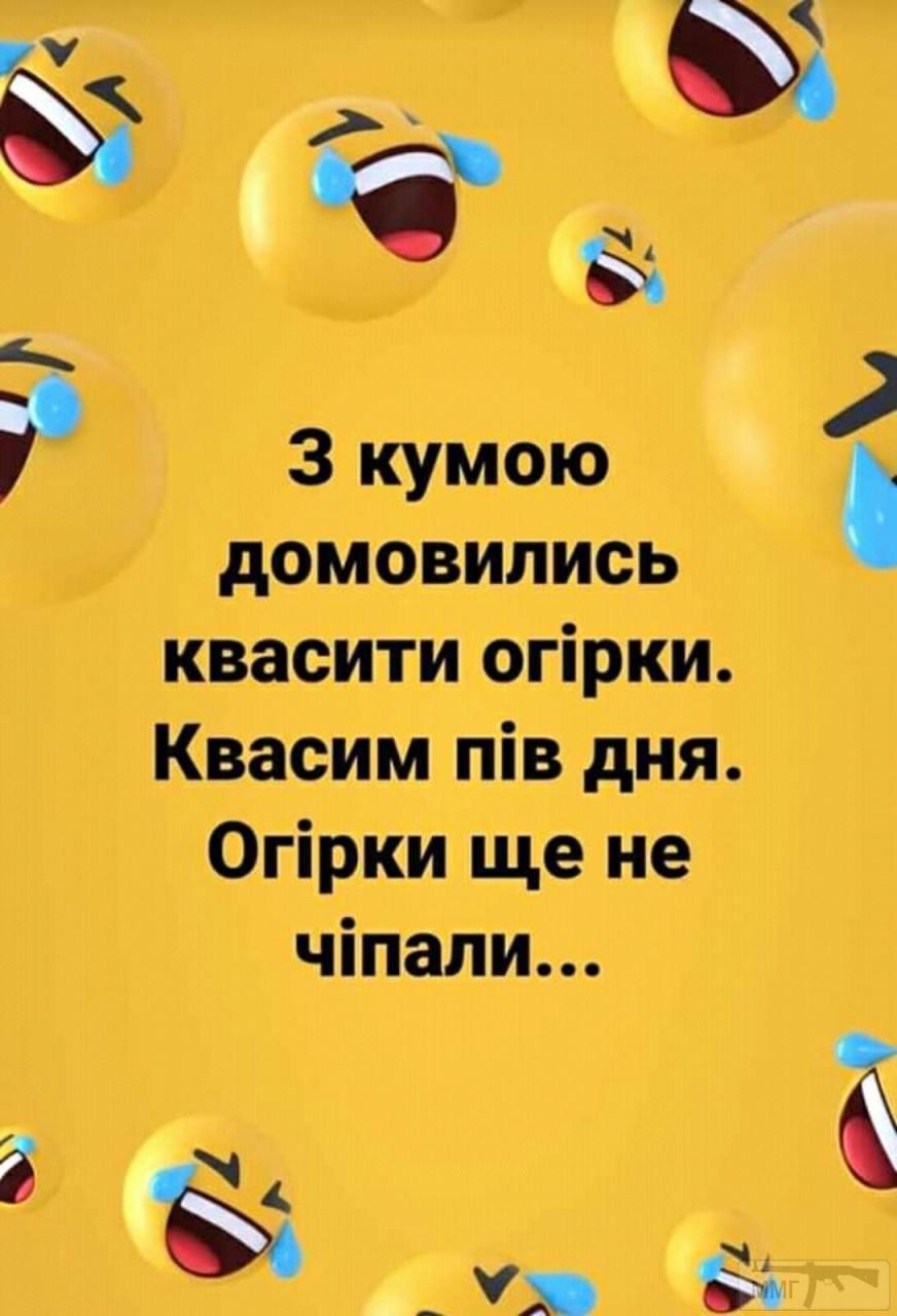 110366 - Пить или не пить? - пятничная алкогольная тема )))