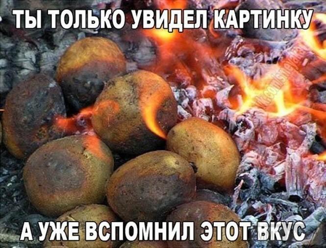 110827 - Закуски на огне (мангал, барбекю и т.д.) и кулинария вообще. Советы и рецепты.