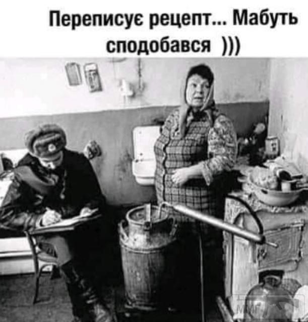 110828 - Пить или не пить? - пятничная алкогольная тема )))