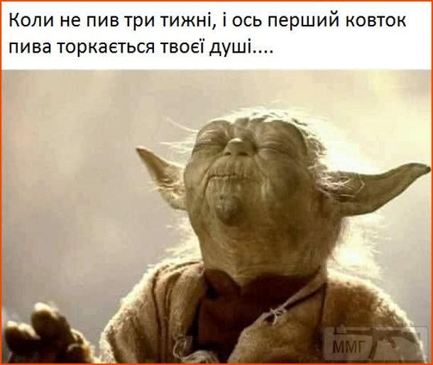 111629 - Пить или не пить? - пятничная алкогольная тема )))