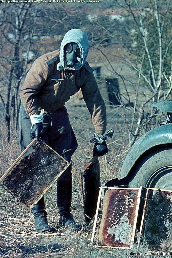 112472 - Военное фото 1941-1945 г.г. Восточный фронт.