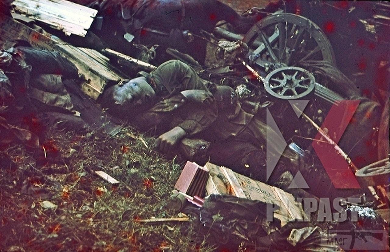 113070 - Военное фото 1941-1945 г.г. Восточный фронт.