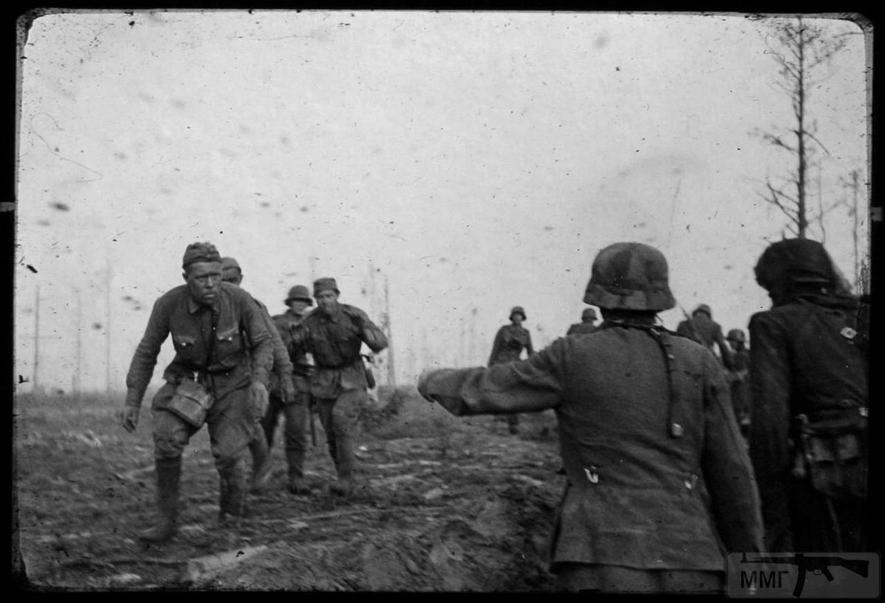 113086 - Военное фото 1941-1945 г.г. Восточный фронт.