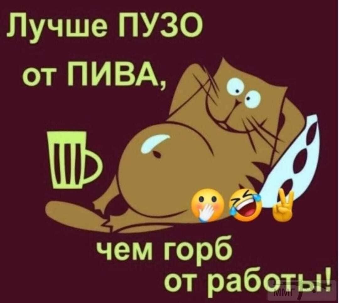113107 - Пить или не пить? - пятничная алкогольная тема )))
