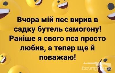 113753 - Пить или не пить? - пятничная алкогольная тема )))