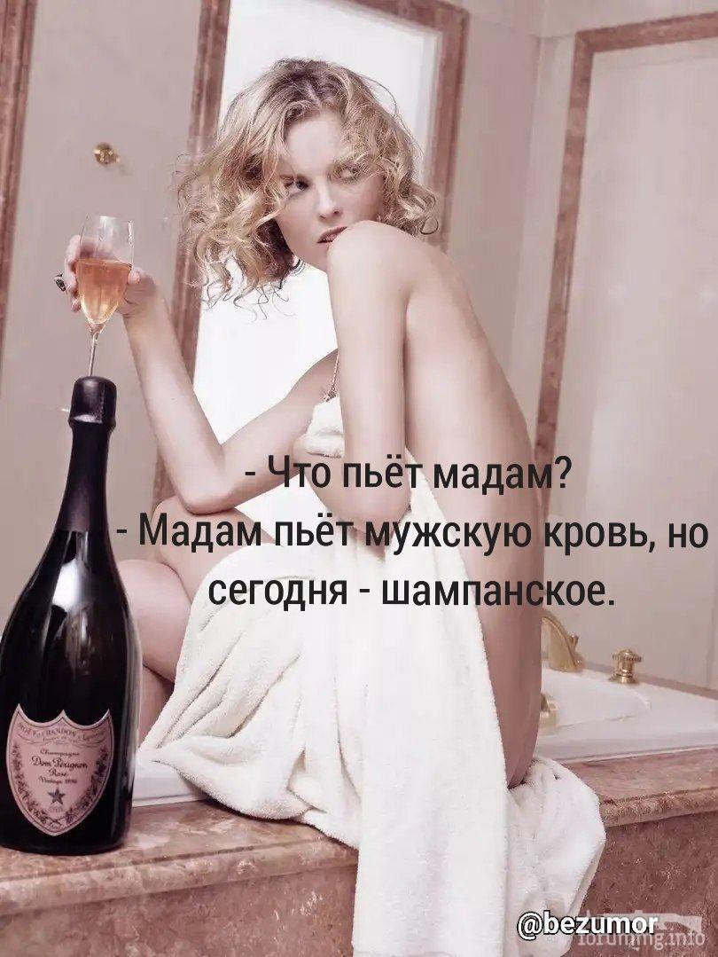 114501 - Пить или не пить? - пятничная алкогольная тема )))