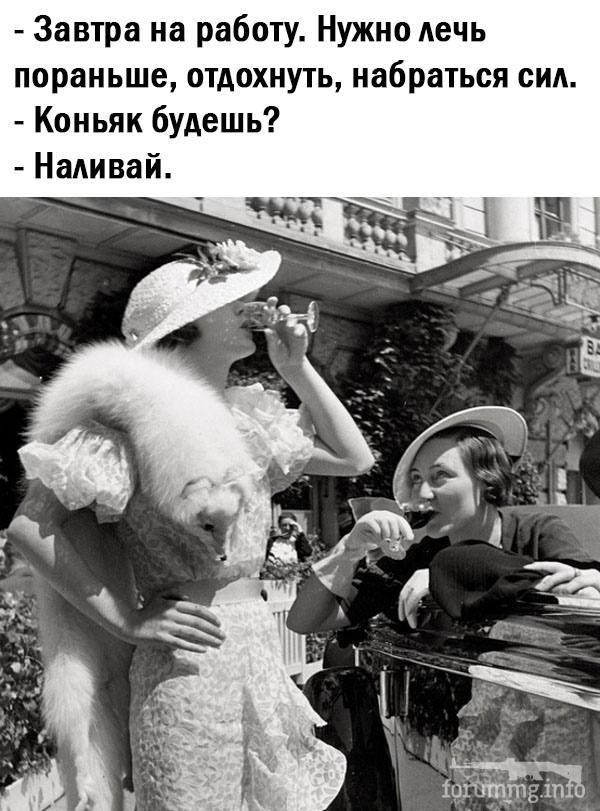 114646 - Пить или не пить? - пятничная алкогольная тема )))