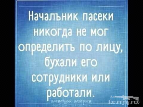 114664 - Пить или не пить? - пятничная алкогольная тема )))