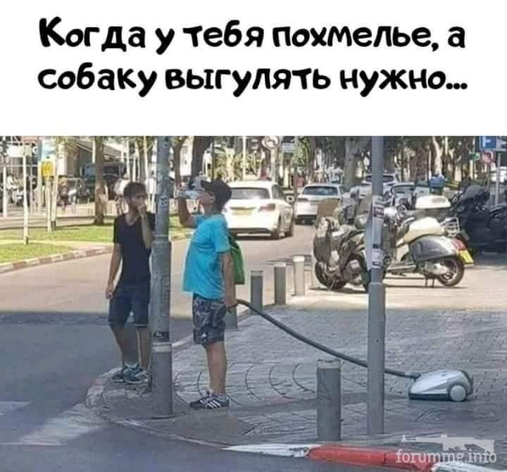114741 - Пить или не пить? - пятничная алкогольная тема )))