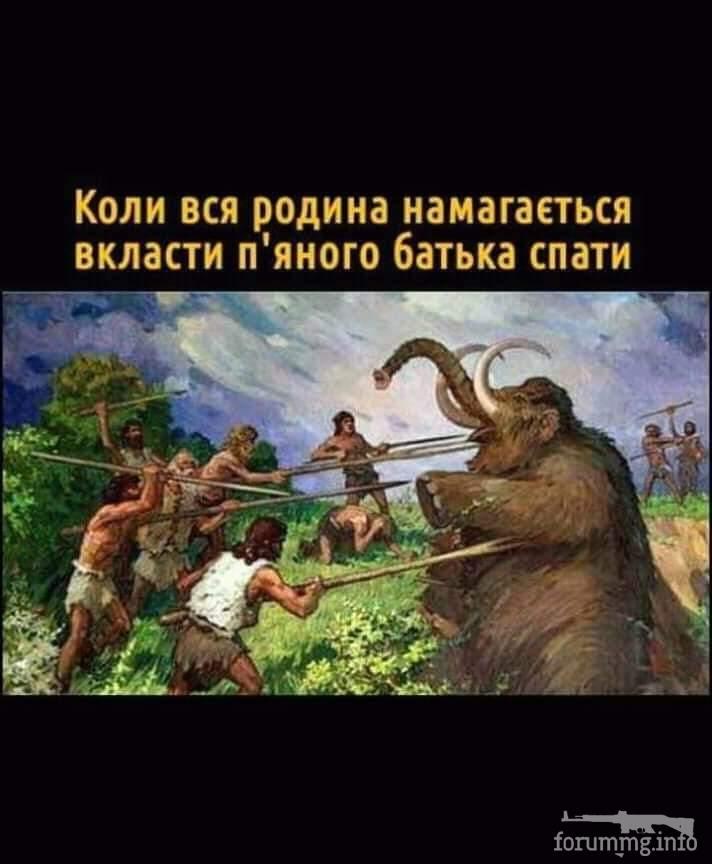 115269 - Пить или не пить? - пятничная алкогольная тема )))