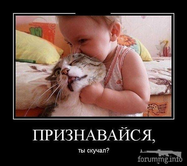 115826 - Смешные видео и фото с животными.