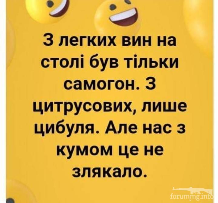 116193 - Пить или не пить? - пятничная алкогольная тема )))