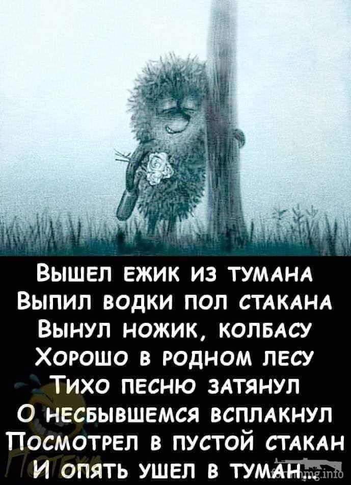 116462 - Пить или не пить? - пятничная алкогольная тема )))