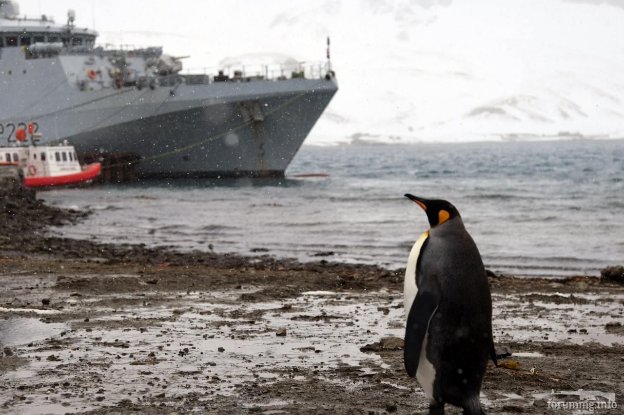 116626 - Royal Navy - все, что не входит в соседнюю тему.