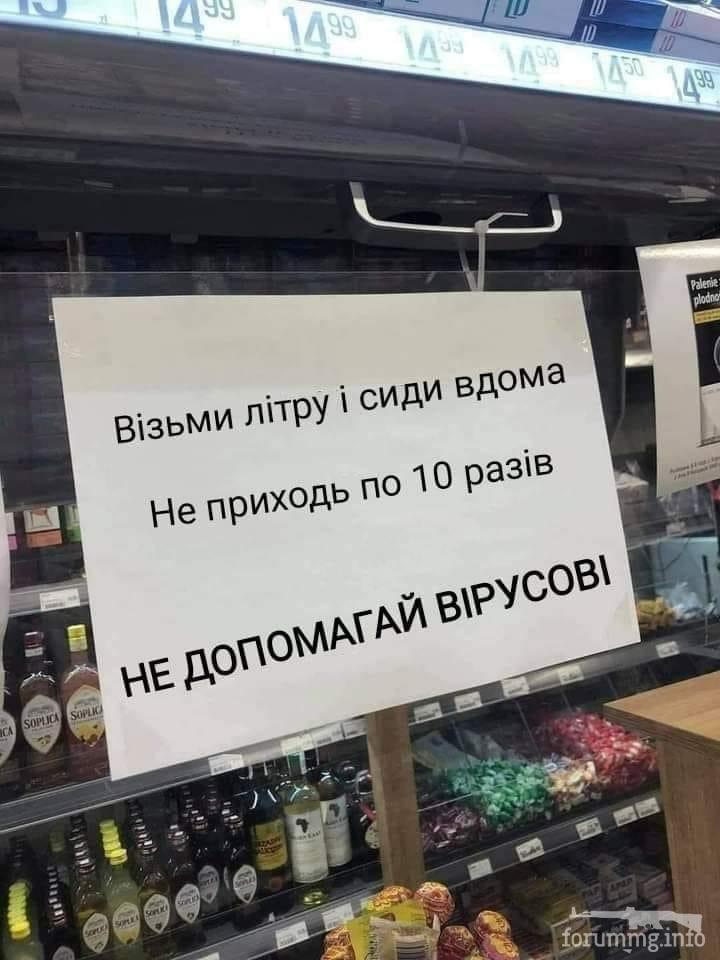 116687 - Пить или не пить? - пятничная алкогольная тема )))