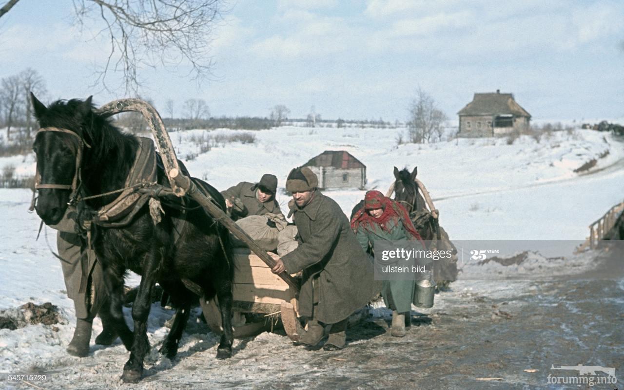 116729 - Военное фото 1941-1945 г.г. Восточный фронт.