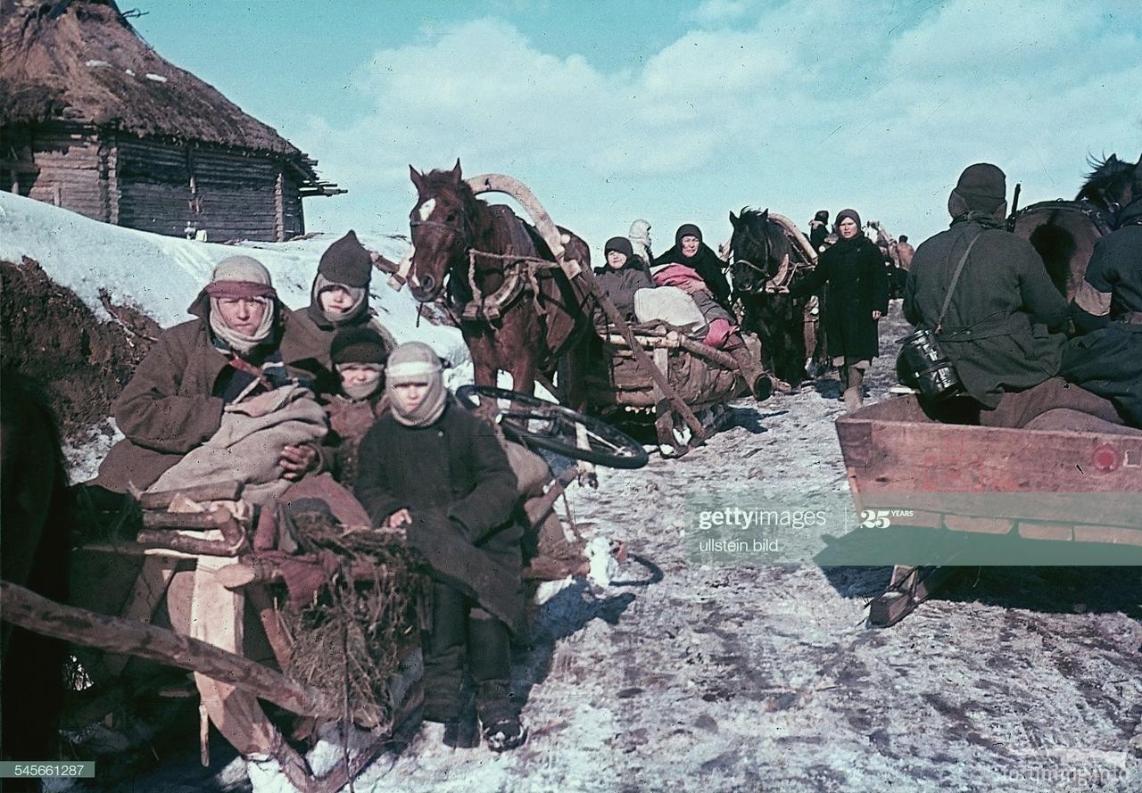 116732 - Военное фото 1941-1945 г.г. Восточный фронт.