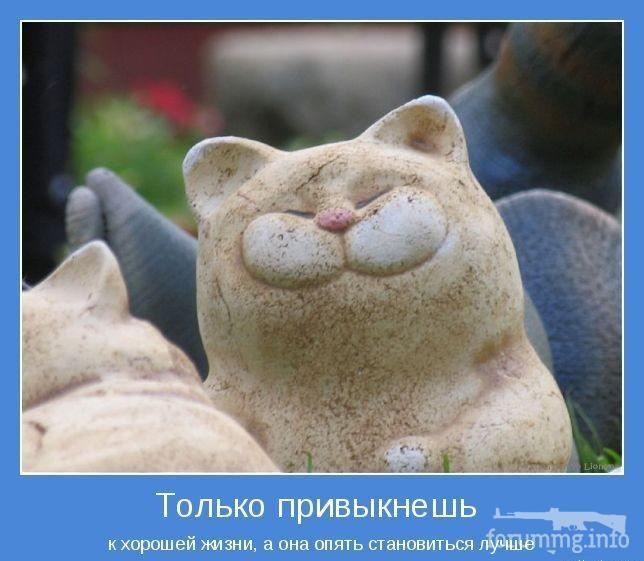 116797 - Пить или не пить? - пятничная алкогольная тема )))
