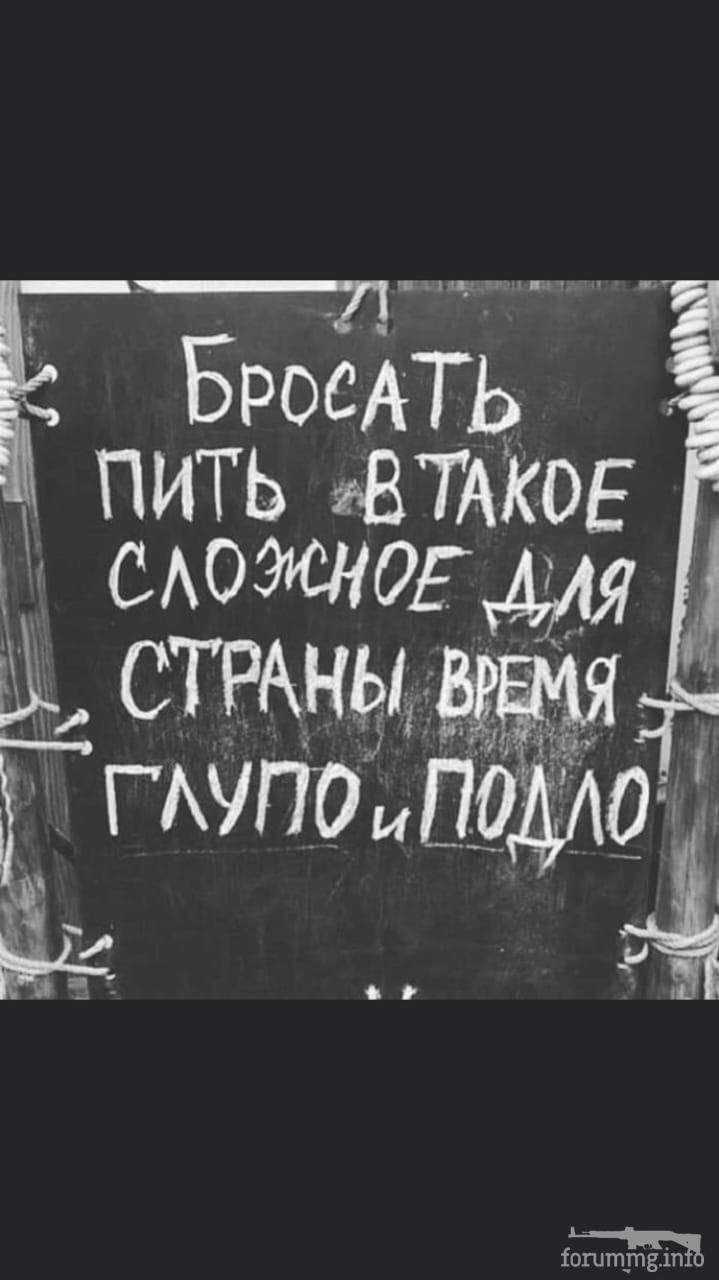 117097 - Пить или не пить? - пятничная алкогольная тема )))